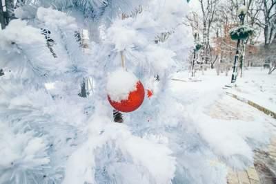 Заснеженный Киев в атмосферных снимках. Фото