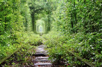 Природные чудеса Украины, которые не перестают удивлять. Фото