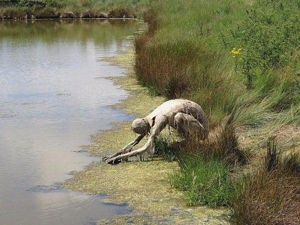 Увидеть скульптуры Софи Престиджакомо посреди ночи и умереть - 6